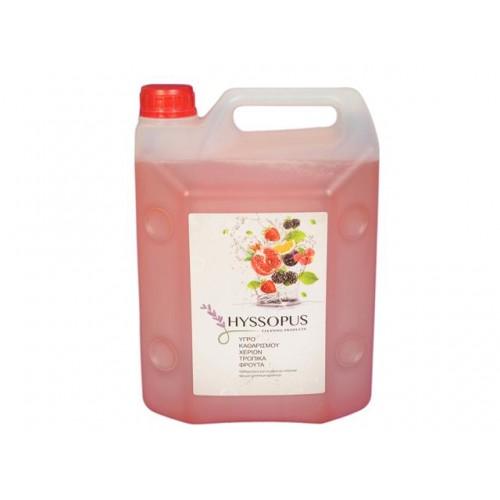 Течен сапун Hyssopus Цитрусови плодове 4л